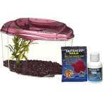 BETTA KIT BURGUNDY 1.84L 13405