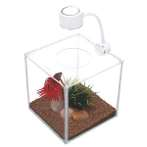 CUBUS GLASS BETTA KIT 3 13485