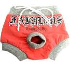 SHORTS FABULOUS (PINK) (MEDIUM) DDY0DSR037M