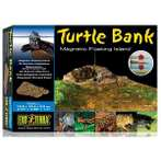 TURTLE MAGNETIC BANK (SMALL) PT3800