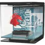 BETTA KIT WILD THINGS THEME 2L 13356