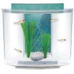 SPLASH AQUARIUM 15L 12859